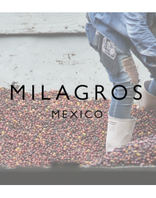 Los Milagros, Mexico - Wood St Coffee